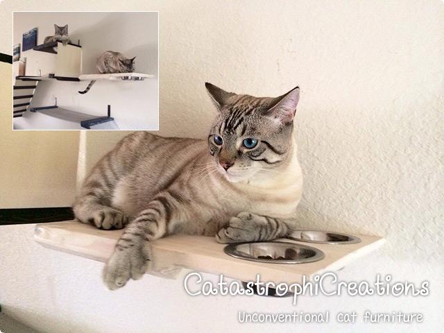 猫シェルフ