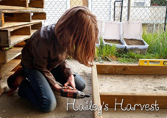 ホームレスのためのシェルターを自分で作る9歳の女の子