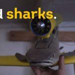 サメ ドローン