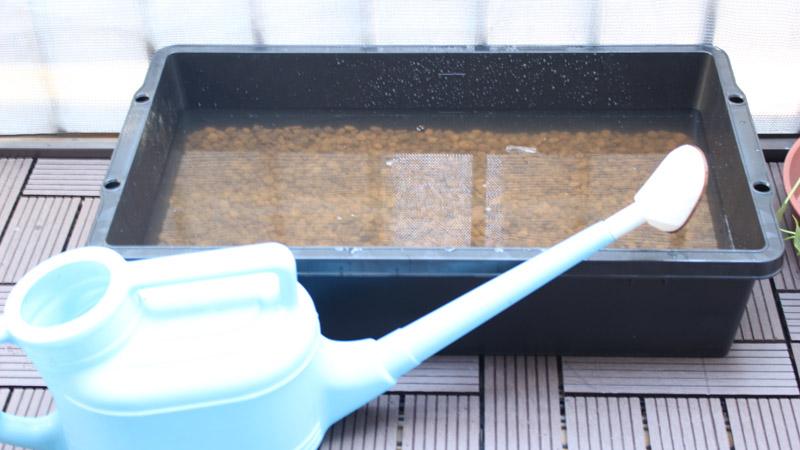 トロ舟(水)