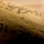 wood2013-2210 (36)